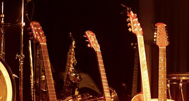 hoyschrecke_gitarren